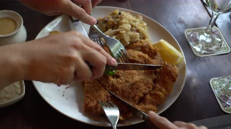 cielęcina : Eating pork Schnitzel Austria cuisine battered meat with  Sauerkraut and potatoes Wideo