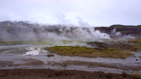 извержение : Iceland - 9 Apr 2017 : Geyser Great Geysir area with tourist Стоковые видеозаписи