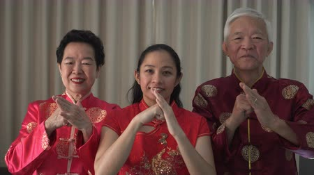Family salute etiquette palm and fist gesture bounding Chinese New Year