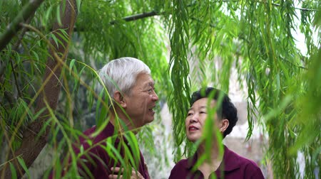 Happy retired Asian elder couple laughing under green willow tree