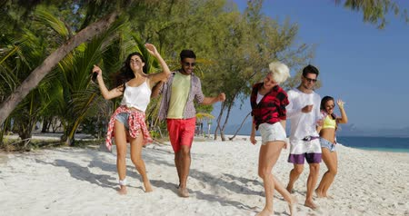 друзья : Cheerful People Dancing On Beach, Mix Race Men and Women Having Fun Friends Together On Vacation Slow Motion 60