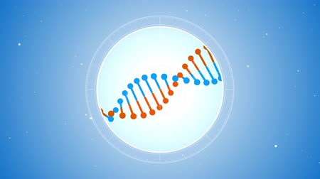 Rotating blue-orange DNA molecule. Located at the center. Futuristic view into the microscope. Blue digital background. Genetics concept. Concept of medicine or science.