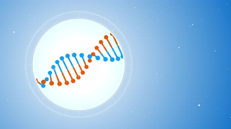 место : Rotating blue-orange DNA molecule. Located on the left. Futuristic view into the microscope. Blue digital background. Genetics concept. Стоковые видеозаписи