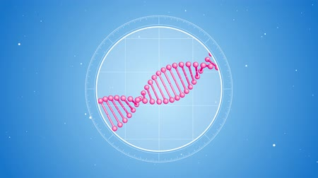 Rotating pink DNA molecule. Located at the center. Futuristic view into the microscope. 3D rendered animation. Blue digital background. Genetics concept. Concept of medicine or science