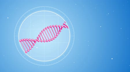 Rotating pink DNA molecule. Located on the left. Futuristic view into the microscope. 3D rendered animation. Blue digital background. Genetics concept. Concept of medicine or science.