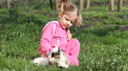 evcil hayvanlar : child and little goat pet Stok Video