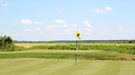 поле для гольфа : golf course with two yellow flags