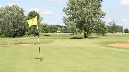 поле для гольфа : golf course with yellow flag