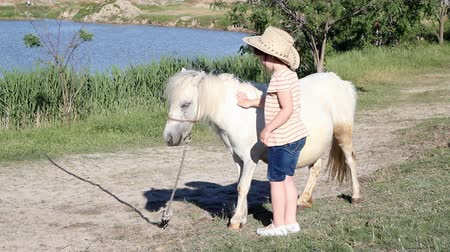 poník : little girl and white pony horse