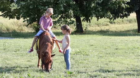 poník : happy boy and little girl with pony horse