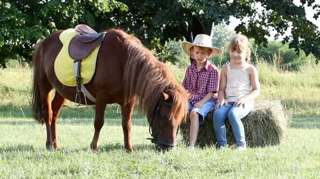 poník : little girl and boy with pony horse on farm