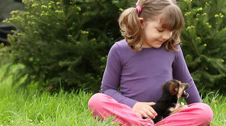 evcil hayvanlar : little girl feeding puppy Stok Video