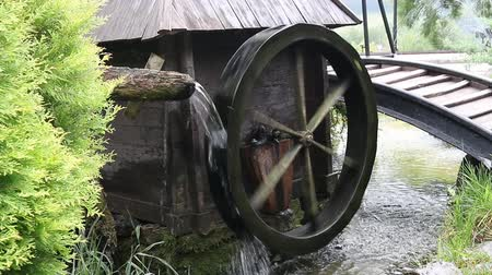 młyn : water mill wheel