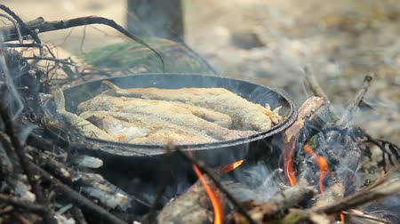 teljesen : Frying freshwater fish. Grayling. Fish roasted in a frying pan on the fire. Closeup Stock mozgókép