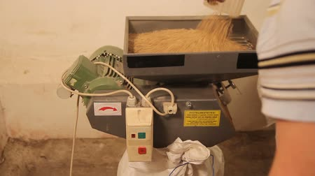 âmbar : Grinding of malt for producing beer at the brewery. The crushing of the malt in an electric mill.