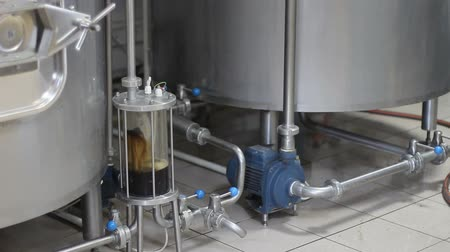 porters : Craft beer brewing. Filtration of brewed beer. Brewing equipment in action. Tanks for brewing. Stock Footage