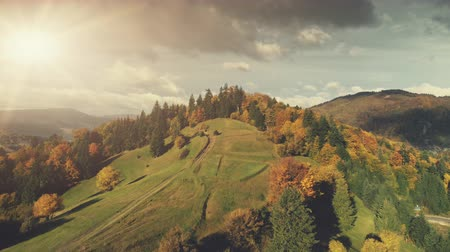 Majestic Autumn Mountain Landscape Aerial View. Nature Travel Beech Tree Forest Hill Dirt Road Overview. Scenic Colorful Mountainous Range Dark Grey Cloud Overcast Sky Drone Flight Footage 4K (UHD) Vídeos