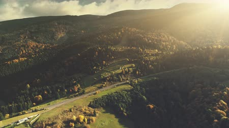 Mountain Valley Landscape Forest Slope Aerial View. Epic Wild Coniferous Wood Hill Countryside Road Overview. Soft Sunlight Panorama Scene Idyllic Village Travel Concept Drone Flight Footage 4K (UHD)