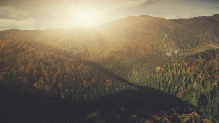 Autumn Sunset Forest Mountain Scenery Aerial View. Bright Wildlife Nature Multicolored Hill Tree Slope Overview. Epic Highland Rocky Landscape Twisted Rural Road Timelapse Drone Flight Footage 4K UHD Vídeos