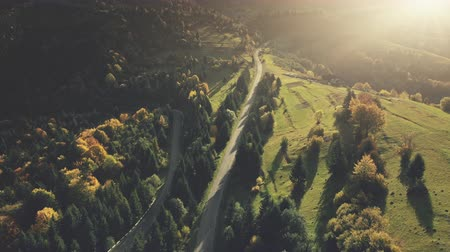 panoramic view : Colorful Hill Forest Country Road Aerial View. Mountain Sunset Landscape long Curve Driveway Overview. Highland Meadow Eco Friendly Environment Holiday Concept Timelapse Drone Flight Footage 4K (UHD) Stock Footage