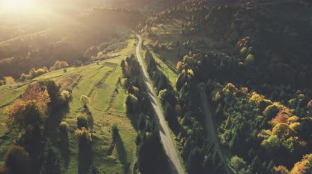 Mountain Sunset Road Epic Highland Landscape Aerial View. Hill Meadow Scenery Travel Concept Ecology Natural Theme. Long Curved Driveway Wildlife Nature Dense Forest Scene Drone Flight Footage 4K UHD Vídeos