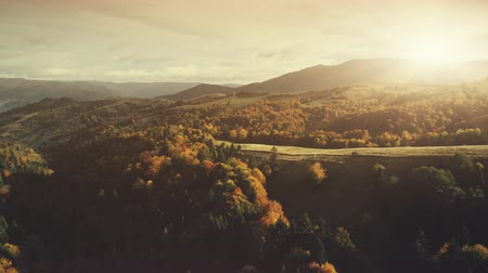 Epic Autumn Mountain Surface Scenery Aerial View. Panoramic Wild Nature Forest Landscape Overview. Multicolored Tree Hill Scene Eco Friendly Environment Concept Drone Flight Footage 4K (UHD)