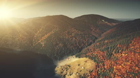 chata : Epic Mountain Slope Surface Dawn Scene Aerial View. Autumn Highland Coniferous Forestry Scenery Overview. Thick Fog Covered Hill Bottom Landscape Natural Environment Drone Flight Footage 4K (UHD)