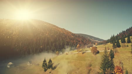 Sunny Wildlife Highland Misty Slope Aerial View. Autumn Coniferous Forest Countryside Wooden Hut Overview. Mountain Meadow Sunrise Soft Light Natural Environment Concept Drone Flight Footage 4K (UHD)