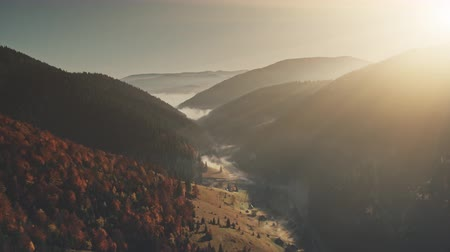 Panoramic Hill Chain Sunrise Sight Aerial View. Highland Dawn Misty Wildlife Habitat Pine Coniferous Landscape Overview. Scenic Forest Surface Sight Clean Ecology Concept Drone Flight Footage 4K (UHD) Vídeos