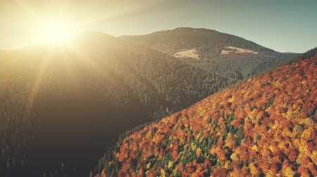 Autumn Mountain Landscape Sunrise Aerial View. Multicolored Coniferous Highland Slope Surface Scenery. Cliff Peak District Coniferous Tree Clean Ecology Concept Drone Flight Footage 4K (UHD) Vídeos