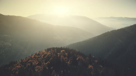 Panoramic Mountain Peak Forest Slope Aerial View. Sunrise Hill Chain Foggy Scenery Overview. Highland Wildlife Habitat Soft Sunlight Natural Environment Concept Drone Flight Footage 4K (UHD)