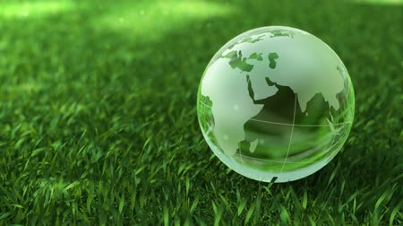 Ecology environment concept, glass globe in the green grass