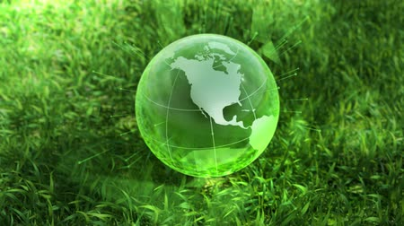 ortam : Ecology environment design concept, glass globe in the green grass