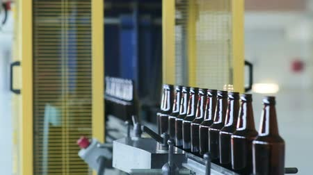 drink industry : Bottle manufacturing technology in industrial factory. Glass recycling.