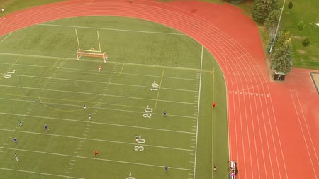 penas : Aerial view of football field with players in Canada. Bird eye view of sports field. Soccer Football top down view of people playing. Stock Footage