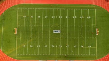 trest : Aerial view of football field in Canada. Bird eye view of sports field. Soccer Football field top down view