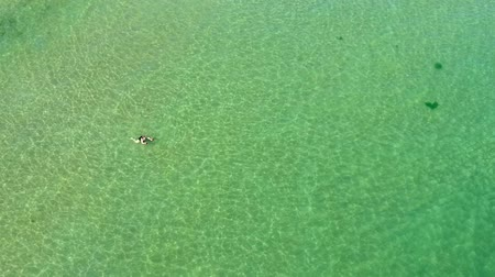 tyrkysový : Lonely woman swimming in transparent sea water. Above the beach top view aerial