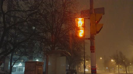 poblíž : Toronto, Ontario, Canada, January 29, 2019: Scarborough, East of Toronto snow storm. Traffic lights counting down for pedestrians near TTC bus stop. Roads are not cleaned. Hard to walk and drive.