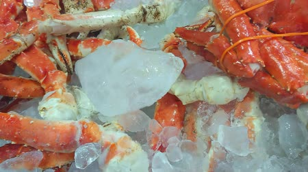 селективный : Red king crab legs cooked and cooled on the ice. Delicious seafood and luxury food. Canadian fish market. Smartphone footage. Стоковые видеозаписи