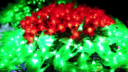 мифический : Beautiful winter Christmas decorations garlands and neon holiday lights. Light festival in Toronto, Ontario, Canada, amusement park, Ontario place theme park. A lot of light bulbs. Slow motion.