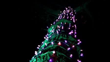 christmas tree with lights : Beautiful winter Christmas decorations garlands and neon holiday lights. Light festival in Toronto, Ontario, Canada, amusement park, Ontario place theme park. A lot of light bulbs. Slow motion.