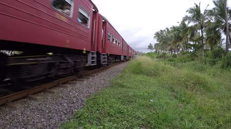 mozdony : Wadduwa, Sri Lanka - May 12, 2018: Passenger train passes through residential areas and jungle in Sri Lanka.