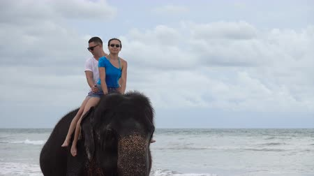 young elephants : Happy young couple is riding on an elephant Stock Footage