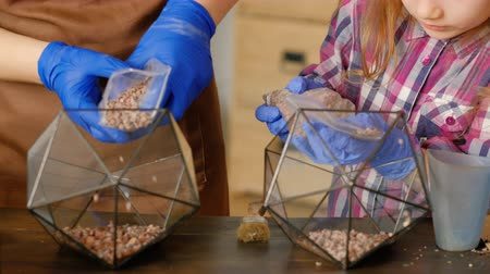 glass master : DIY florarium. Interior decor. Home gardening master class. Closeup of woman and little girl hands pouring gravel into glass vase. Stock Footage