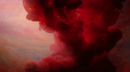 infusion : Red ink infusion into colored water. Abstract paints motion. Flowing animation