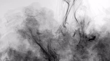 whirling : Black ink flowing in water. Abstract fluid paint motion. Pollution and poison spreading