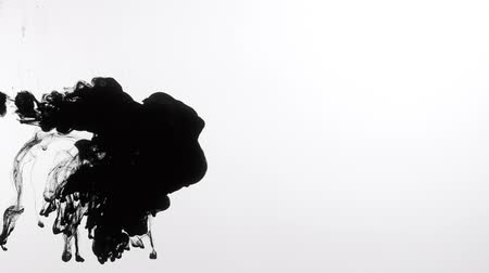 rozptyl : Isolated on white mask of black smoke or ink injected in water. Fluid interfusion.