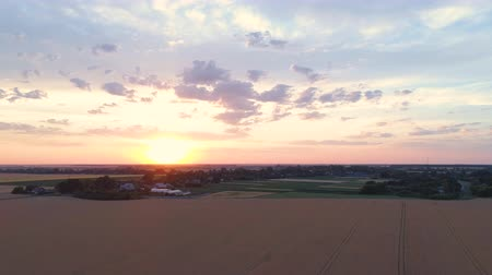 milharal : Rural scenery aerial shot at sunset. Field and country landscape