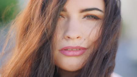 обрамление : Female natural beauty. Chiselled face features. Wind moving hair. Closeup portrait Стоковые видеозаписи