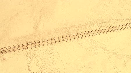 pegada : Exotic journey. Yellow sand desert. Footprints textured surface. Vídeos